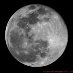 Luna-13-07-2014_0769